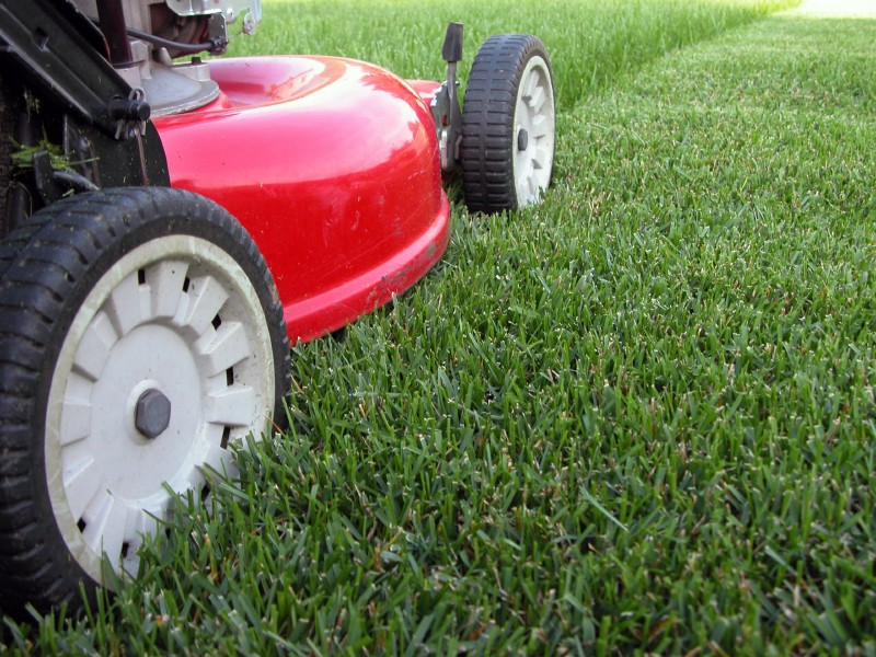 Grass cutting and lawn mowing services for Lawn mower cutting grass